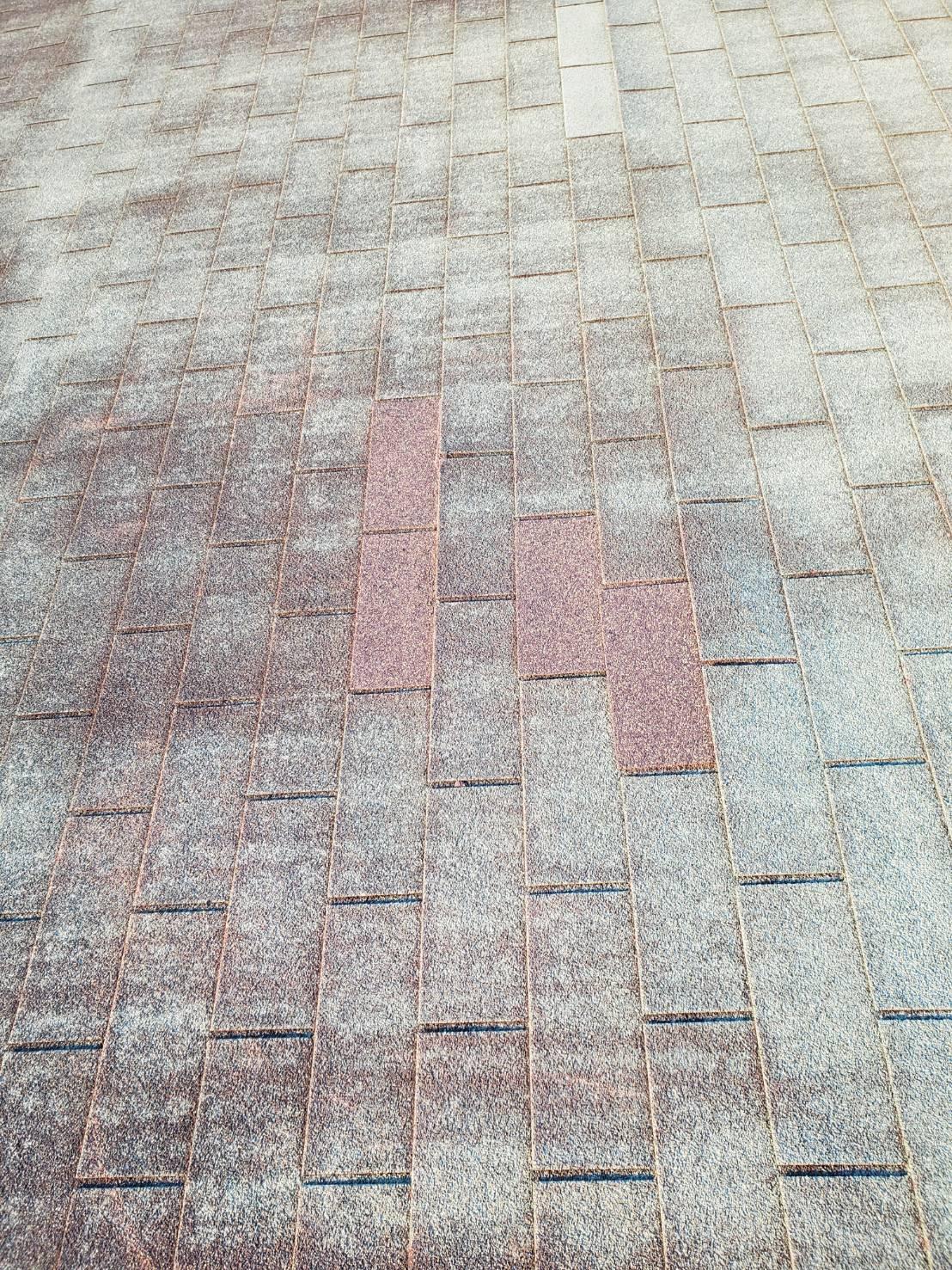 屋根の補修完了②
